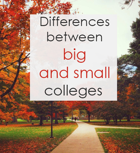differences between small medium and large Another major difference between management style of small business and large business is in the field of hr planning hr planning is a process of making assumptions and forecasting future hr needs of the organisation (decenzo and robbins, 1998).
