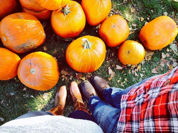 10 Fun Fall Activities On A Budget
