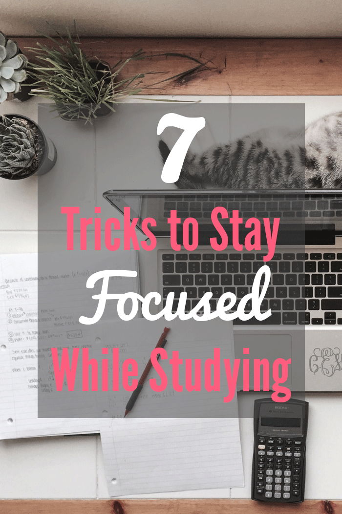 studying, 7 Tricks to Stay Focused While Studying
