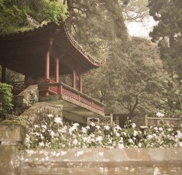 20 Reasons To Visit China