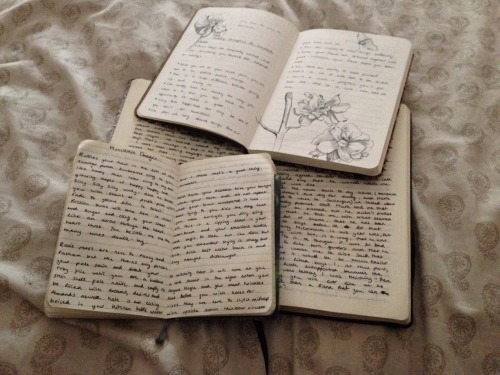 Do you plan on bringing a journal when you're going home for the holidays?