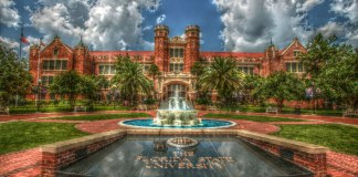 So Florida State University is your dream school, but the price tag's a nightmare. Consider this guide to FSU financial aid if you're feeling lost!