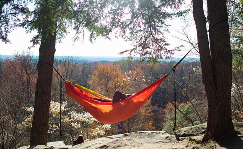 10 Free Things To Do Around Kent State University