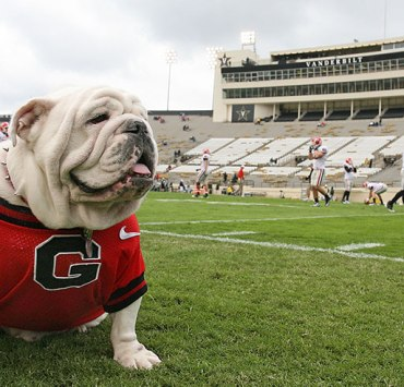 Follow these 20 life hacks at University of Georgia to help make the best college years here in Athens, aka the greatest college town, just a little easier!