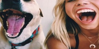 Let's face it. Dogs are sometimes so much easier to be around than people. If you're a dog lover, here are relatable signs you like dogs more than people!