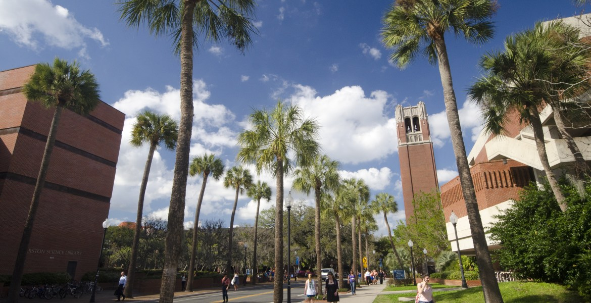 There are certain things that make you a UF student. Here are 10 GIFs that describe being a student at University of Florida.