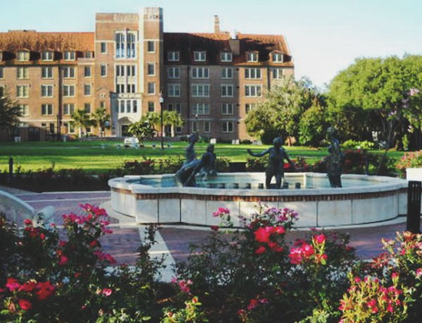 Choosing where you want to live is a huge decision, with all different factors to consider. So, here's a ranking of the dorms at Florida State University.