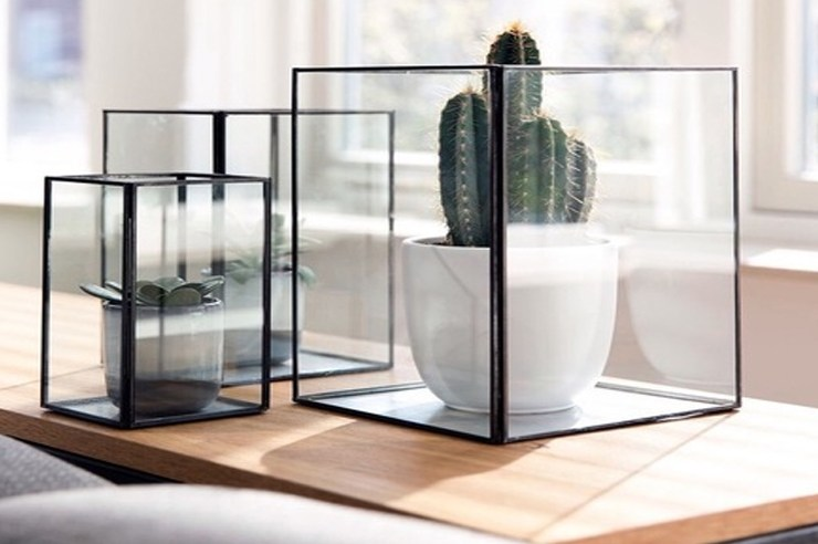 Here are tips on how to take care of succulents. Succulents are everyone's newest obsession. They're very hipster. Check these tips for caring for the plant