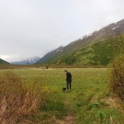 If you enjoy hiking in Alaska, Anchorage has some of the best hiking trails to visit. And if you want to bring your dog, these Alaska hiking trails are dog friendly! With so many hiking trails around and near Anchorage, it can be hard to decide which dog-friendly trail to go to, so here are some ideas!