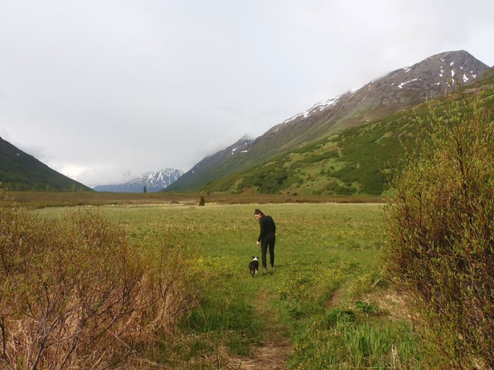 10 Alaska Hiking Trails Near Anchorage That Are Dog Friendly