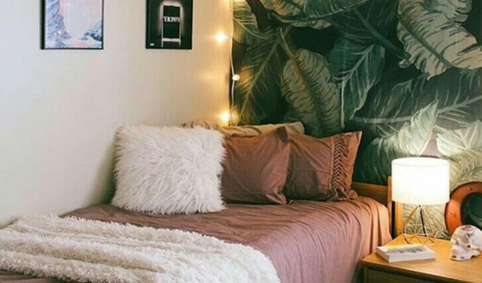 How to Brighten a Drab Dorm Room - Society19