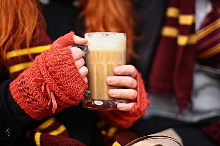 We grew up identifying ourselves with different characters from Harry Potter and the house they were placed in. That house can say a lot about ourselves. Read this article to learn what yourfavorite Harry Potter house says about your personality.