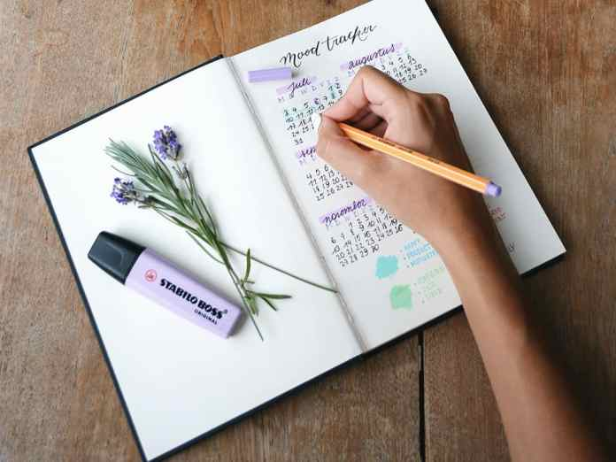 Heres How To Bullet Journal For Beginners - Society19-7723
