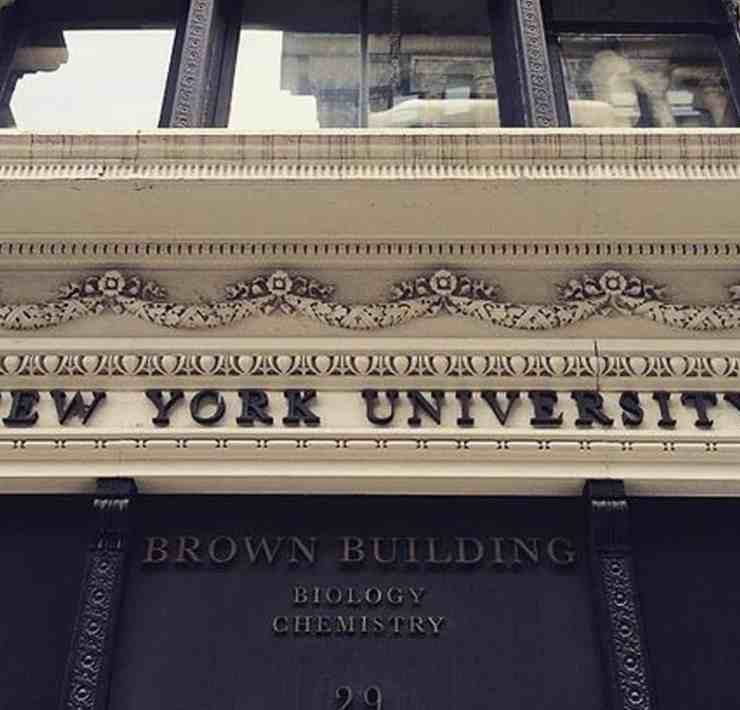 The kind of things that will happen to you while you are at New York University. What sorts of things have happened to you?