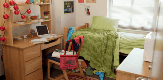 Adding these must-haves in your dorm room can make you feel like you never left home since college dorm rooms can be plain, cold and uninspiring.