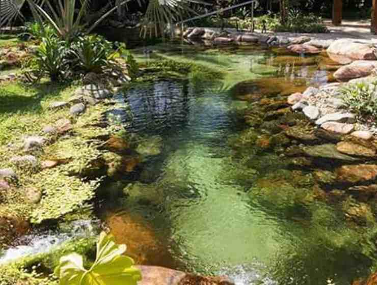 These DIY ponds will create the most relaxing and beautiful outdoor space. They are simple to install and you can design them for your style.