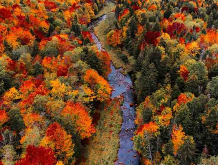 These small Vermont towns are absolutely beautiful and charming places to visit in New England any time of year, but especially in the fall.