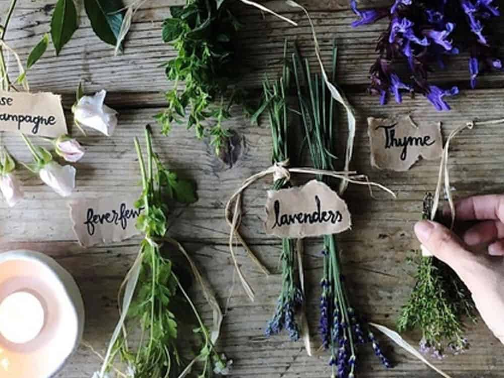 Here are some historic natural remedies that can help you releive everyday irritation or pain. These are all natural and good for you!