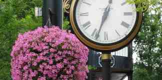 Living in Fairhope, Alabama, there are a few common things there that everyone who lives there understand. Check them out!