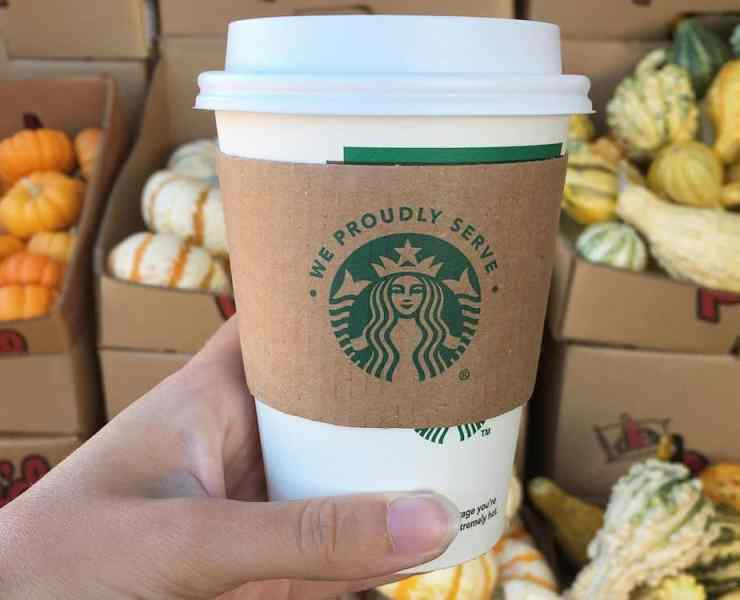 Pumpkin spice lattes are more harmful to the environment than you may realize. Here are all the facts you should know about how it's hurting our planet.