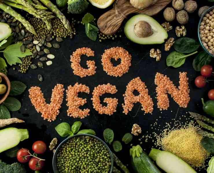 Going vegan can be a huge step for some, but it can be difficult as well. Here are some of the tips I think are the most important when going vegan.