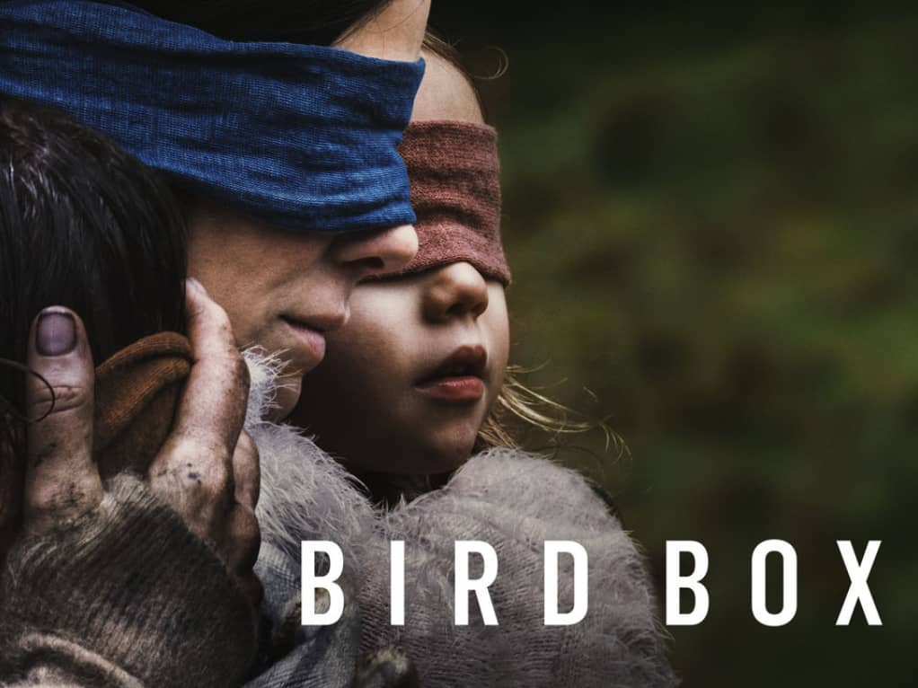 Did the infamous Bird Box live up to the hype? You've seen the countless memes but were they really worth being made? Find out in our review of Bird Box!