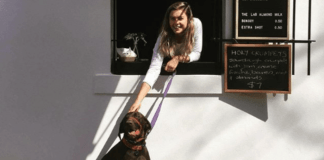 5 Dog Friendly Cafes You Need To Take Your Pooch To