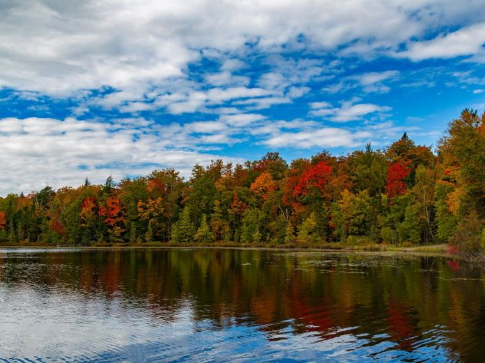Why You Should Visit Michigan In The Fall