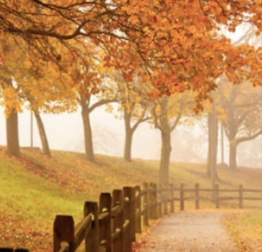 5 Great Ways To Take Advantage Of Fall Weather