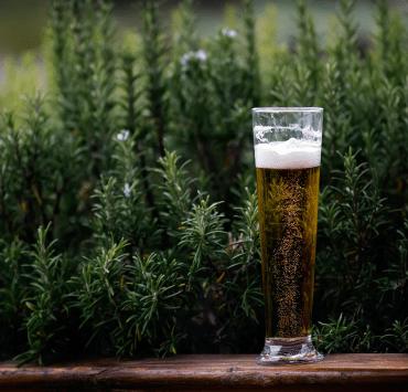 Common Beers, 5 Great Common Beers for Non-Beer Drinkers