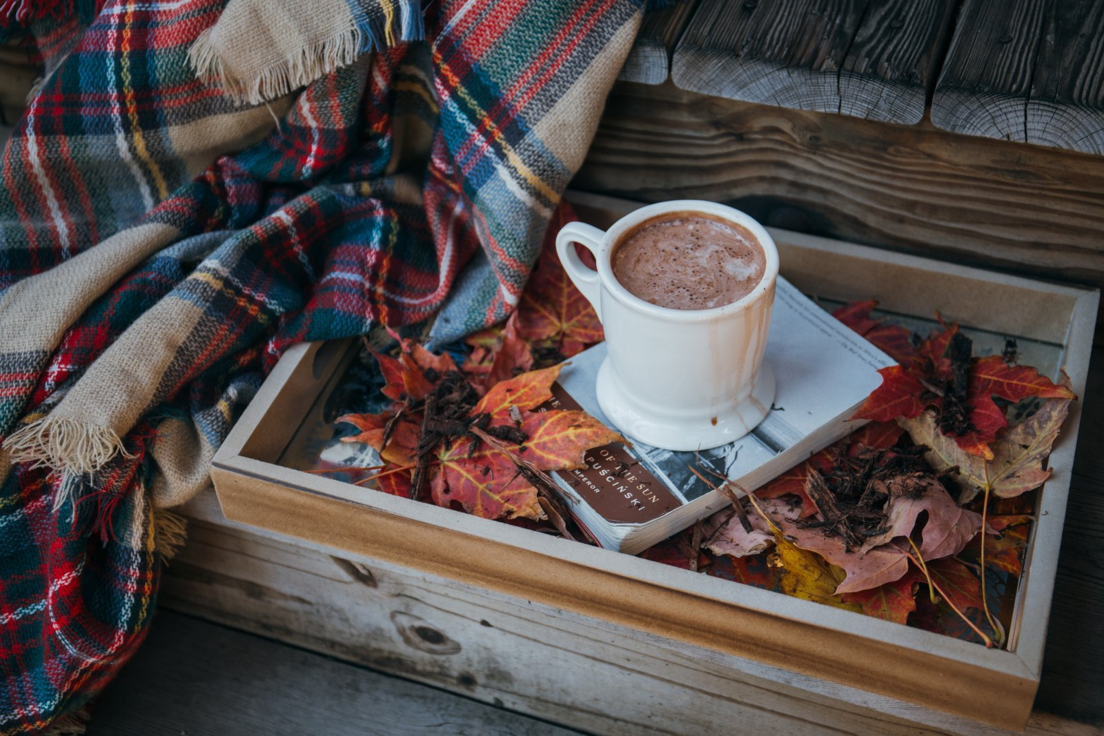 10 Alcoholic Hot Chocolate Recipes Perfect For Autumn