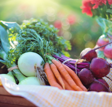 5 Vegetables That You Should Grow In Your Garden