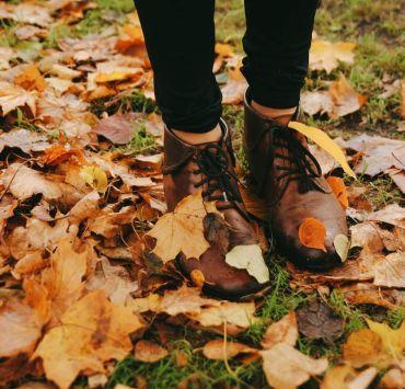5 Fun Fall Activities To Do Near Pace University