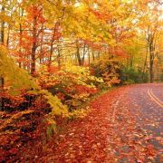 10 Best Places To See Fall Foliage