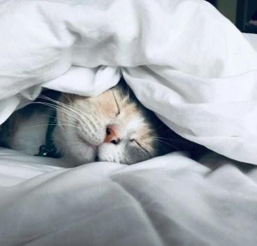 better night's sleep, 10 Tips to Help You Get A Better Night's Sleep