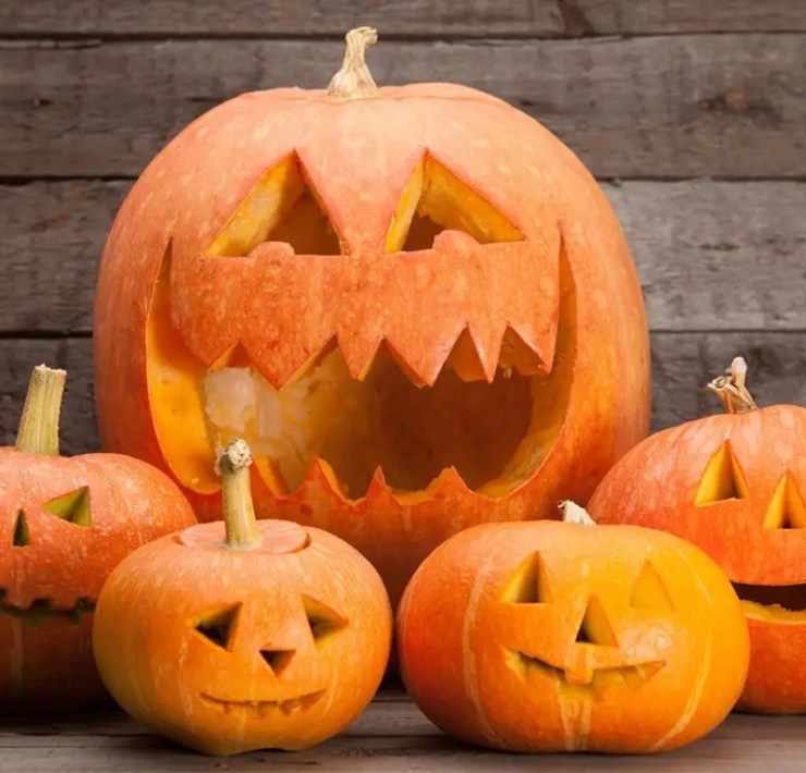 10 Ways To Celebrate Halloween As A College Student