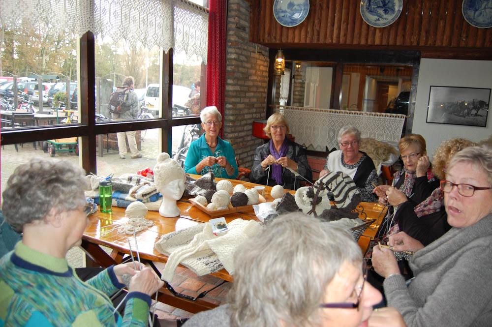 1. Wolltag auf Texel - auf sockshype Wollmarkt 1. Wolltag auf Texel – Wollmarkt in Holland