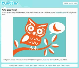 """The dreaded Twitter Foul Owl indicated that my Twitter account had been suspended due to """"strange activity""""."""