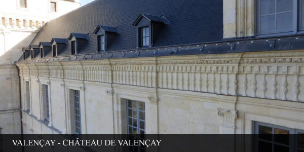 PIERRE - CHAT VALENCAY photo7