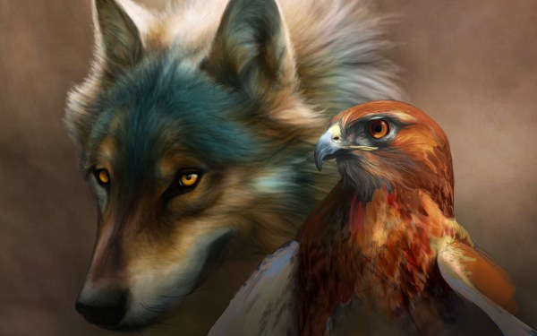Wolf Spirit Animal and Hawk