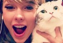 #Musical: Taylor Swift em Cats no cinema?