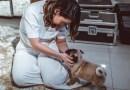 #Celebridade: Naiara Azevedo ganha cachorro de fã no valor de R$ 3.000