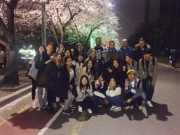Ausflug mit der deutsch-koreanischen Tandemgrupp zum Kirschblütenfest // Field trip with the Korean-German tandem group to the cherry blossom festival