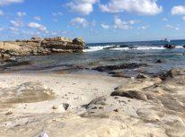 Kelibia rock beach