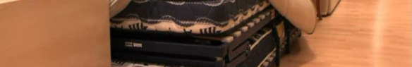 Sofá cama litera desenfundado