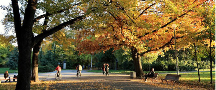 Image result for sofia park bulgaria