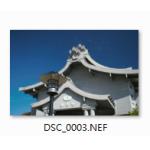 微軟推出「相機轉碼器套件」輕輕鬆鬆看 RAW 檔!
