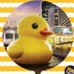 香港海港城「黃色小鴨」實景線上看