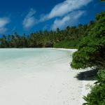 [早安! 地球] 面積有55個台灣 美國將建全球最大海洋保護區