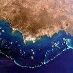 [早安! 地球] 美景危機! 澳洲大堡礁持續惡化